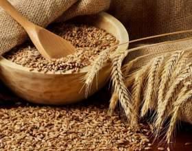 Брага з пшениці для самогону фото