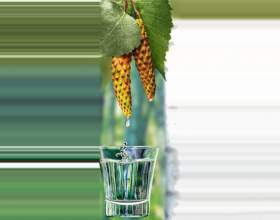 Цілюща березова настоянка на горілці фото