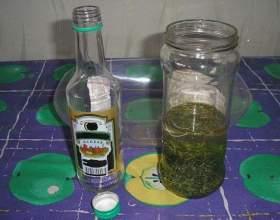 Чистотіл на горілці: рецепт настоянки і її застосування фото