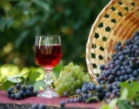 Робимо вино з винограду ізабелла фото