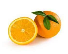 Домашнє вино з апельсинів фото