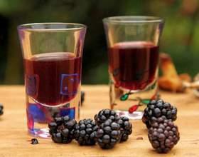 Домашні рецепти вин з ожини фото