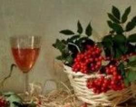 Два кращих рецепта вина з червоної горобини фото