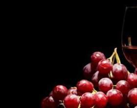 Характеристика винограду каберне совіньон і вина з нього фото