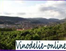 Італійські вина з провінції венето фото