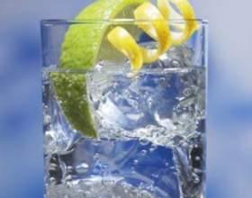 Як і з чим пити джин фото