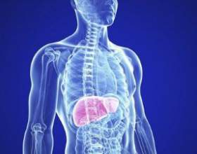 Як самостійно відновити печінку після тривалого вживання алкоголю фото