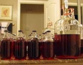 Як зробити вдома вино зі слив фото