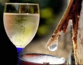 Як зробити домашнє вино з березового соку? фото
