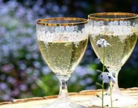 Як зробити шампанське з бузини в домашніх умовах фото