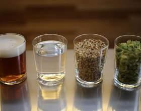 Як зварити пиво в домашніх умовах? фото