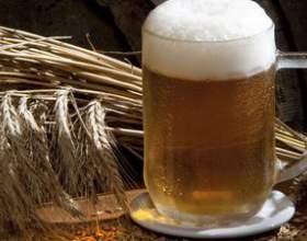 Яке обладнання для виробництва пива необхідно пивовароⳠфото