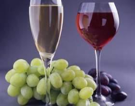 Класифікація вина фото
