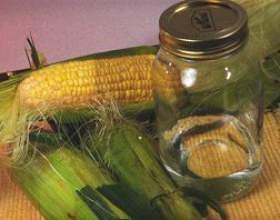 Кукурудзяний самогон своїми руками фото