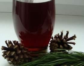 Лікувальні настоянки шишок на горілці: рецепти приготування фото