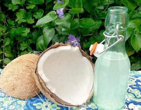 Лікер з кокоса: рецепт і з чим пити кокосовий лікер фото