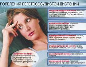 Чи можна пити алкоголь при всд (вегето-судинна дистонія)? фото