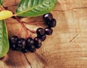 Наливка з черноплодки фото