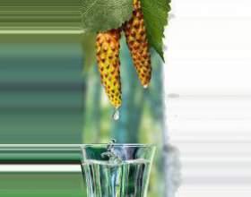 Настоянка березових бруньок спиртова, на горілці: застосування фото
