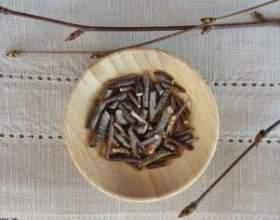 Настоянка березових бруньок: властивості, показання, рецепт фото