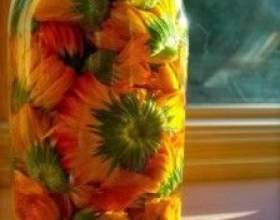 Настоянка календули при вагітності фото