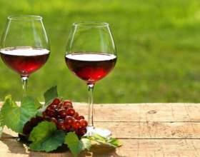 Осіннє вино з калини в домашніх умовах фото