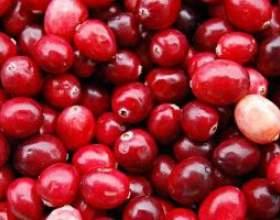 Освіжаючий фруктовий або ягідний морс фото