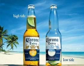 Пиво corona extra фото