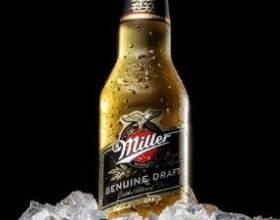 Пиво миллер - саме універсальне пиво в світі фото