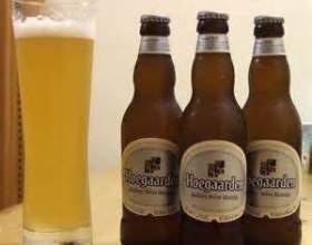 Користь і шкода нефільтрованого пива фото