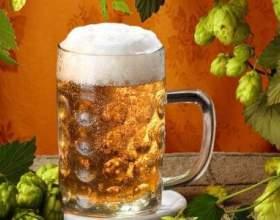 Як часто і в яких кількостях можна пити пиво? фото