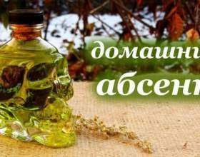 Приготування абсенту в домашніх умовах: компоненти і рецепт фото