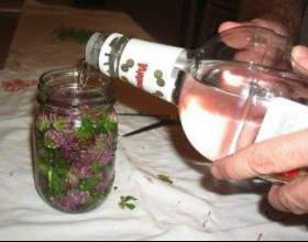 Приготування і застосування настоянок на горілці фото