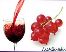 Приготування вин з червоної смородини фото