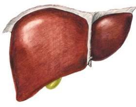 Реакція печінки на алкоголь і алергія фото
