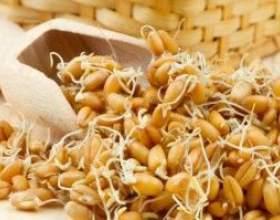Рецепт браги на основі пшениці фото