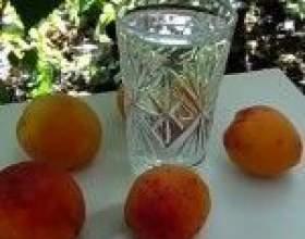 Рецепт і технологія приготування абрикосового самогону фото