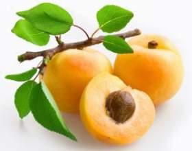Рецепт приготування домашнього вина з абрикосів фото