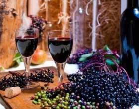 """Рецепт вина з ягід і квітів бузини чорної С""""РѕС'Рѕ"""