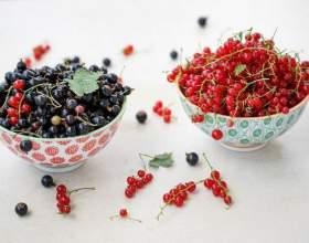 Рецепти домашніх вин з чорної і червоної смородини фото