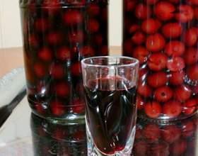 Рецепти ягідних, абрикосових і інших наливок в домашніх умовах фото