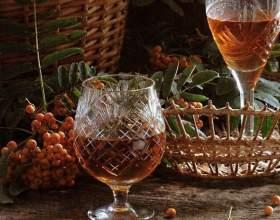 Рецепти приготування домашнього вина з ягід горобини фото
