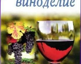 Рецепти вин з трав фото