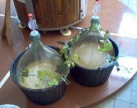 Самогон і брага з березового соку. Рецепт в домашніх умовах фото