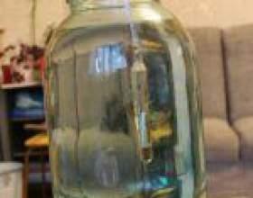Самогон з інжиру (плодів фігового дерева) фото