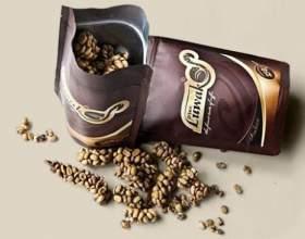 Найдорожча кава kopi luwak: напій для привілейованих і не вибагливих фото