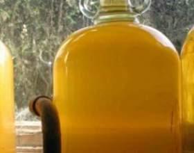Сидр в домашніх умовах - секрети ароматного напою з райських яблук фото