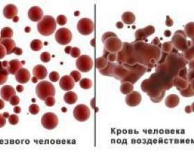 Скільки тримається алкоголь від пива в крові? фото