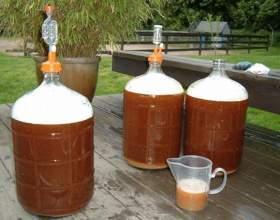 Скільки зазвичай бродить домашнє пиво? фото