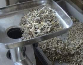 Способи приготування браги з пшениці фото